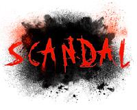 irs 501c4 scandal