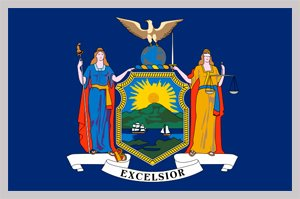 new york state back taxes options