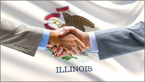 state of illinois back taxes options
